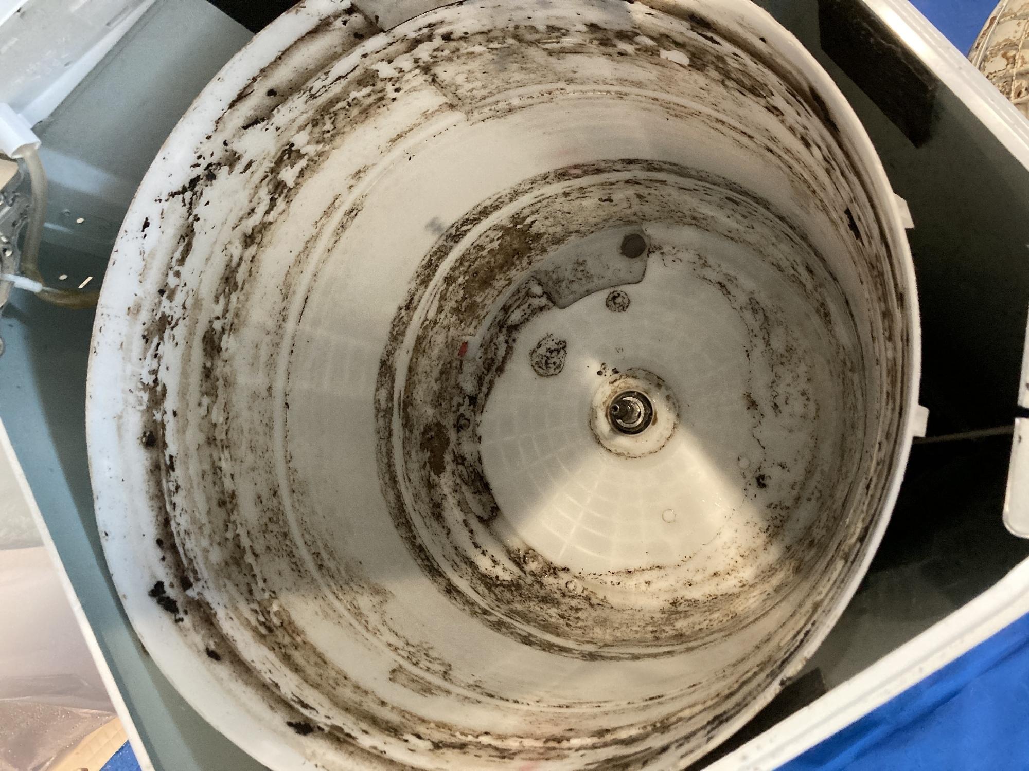 ならない カビ なく 洗濯 槽